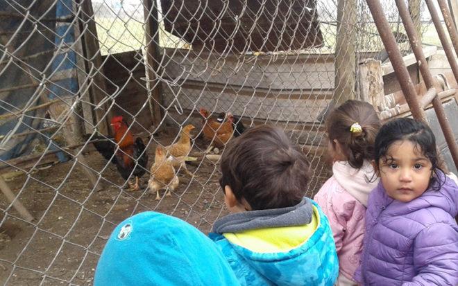 """En el Jardín Infantil """"Valle Hermoso"""" de Catemu rescatan la cultura familiar con innovadoras actividades. Con grabaciones de sus padres y visitas a casas de compañeros generan vínculos de niños y niñas con su familia y el entorno."""