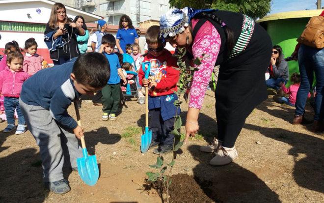 A través de las Educadoras de Lengua y Cultura Indígena que trabajan a diario en algunos jardines focalizados de la región se ha logrado relevar y fortalecer la cultura de nuestros ancestros.