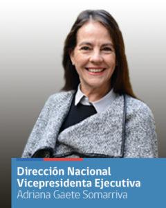 Vicepresidenta Ejecutiva Adriana Gaete participó junto a diversas organizaciones en sesión del Consejo de la Sociedad Civil