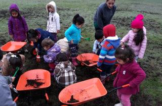 Párvulos aprenden sobre medio ambiente implementando invernadero