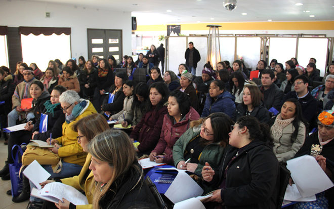 Más de un centenar de profesionales de la región del Biobío participaron de la activada que estuvo liderada por la Corporación Nacional de Desarrollo Indígena, Conadi y que duró dos días.