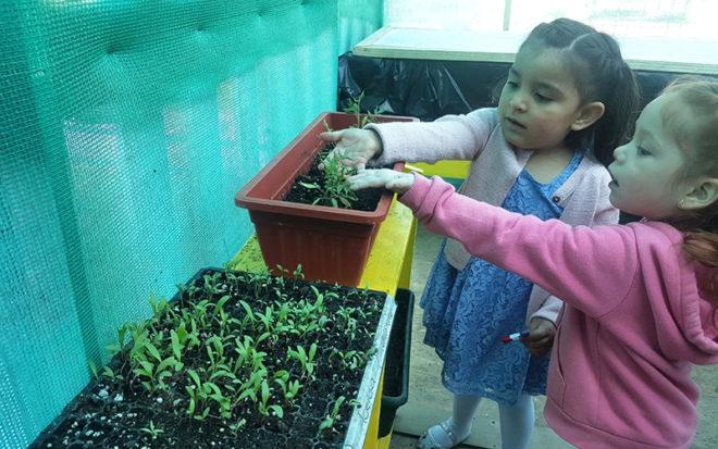 """Para la encargada del Jardín Infantil """"Girasol"""" de Coquimbo, Andrea Camilla, esta iniciativa viene a potenciar el sello educativo del establecimiento que tiene relación con los estilos de vida saludable y la protección y cuidado del medio ambiente."""