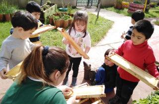 Innovador proyecto de jardín de Santa Bárbara gana premio de la OMEP