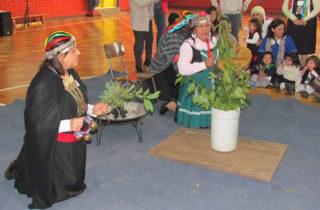 Jardines infantiles de la Junji Araucanía ganan Fondo de Innovación de Educación Parvularia 2018