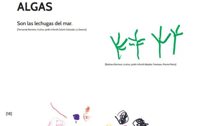El libro de Ediciones Junji es el primero realizado por niñas y niños desde Colchane a Puerto Williams.