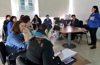 Directora Regional de la Junji Los Ríos sostuvo encuentro con Encargadas de Jardines Alternativos
