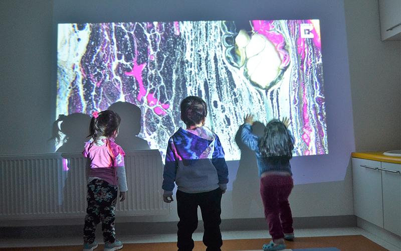 Reggio Emilia se caracteriza por ser una propuesta educativa en la que las niñas y niños desarrollan su curiosidad y aprenden a través del juego, la exploración y experimentación.