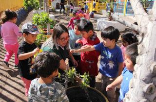 Párvulos disfrutan de actividades pedagógicas donde aprenden y exploran