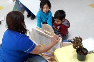 Finalizan celebraciones del Mes del Libro en Los Ríos
