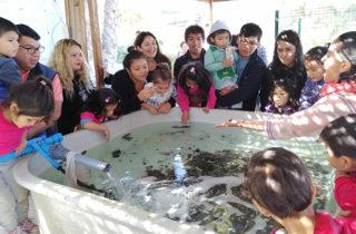 Potencian aprendizajes conociendo Museo del Mar en Iquique