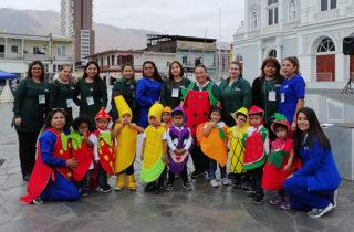 Jardines de Iquique comparten sus experiencias pedagógicas