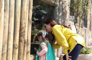 Ministro Monckeberg anunció que jardines Junji podrán visitar de forma gratuita el Zoológico Nacional