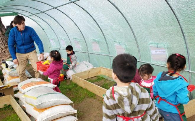17 jardines son seleccionados para los Fondos de Innovación Educación Parvularia, FIEP
